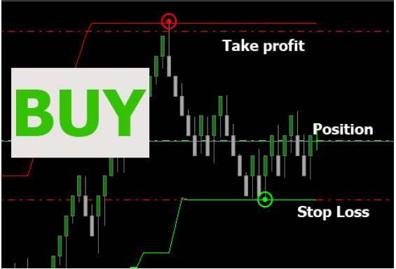 buy.thumb.jpg.cd2ae43cb2eb60ddf8a8da0426
